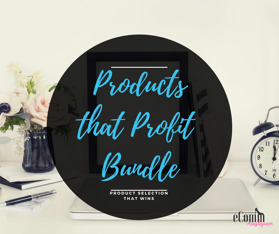 products that profit bundle.png