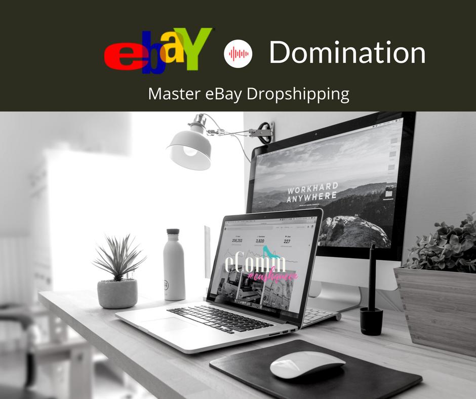 ebay domination image.png