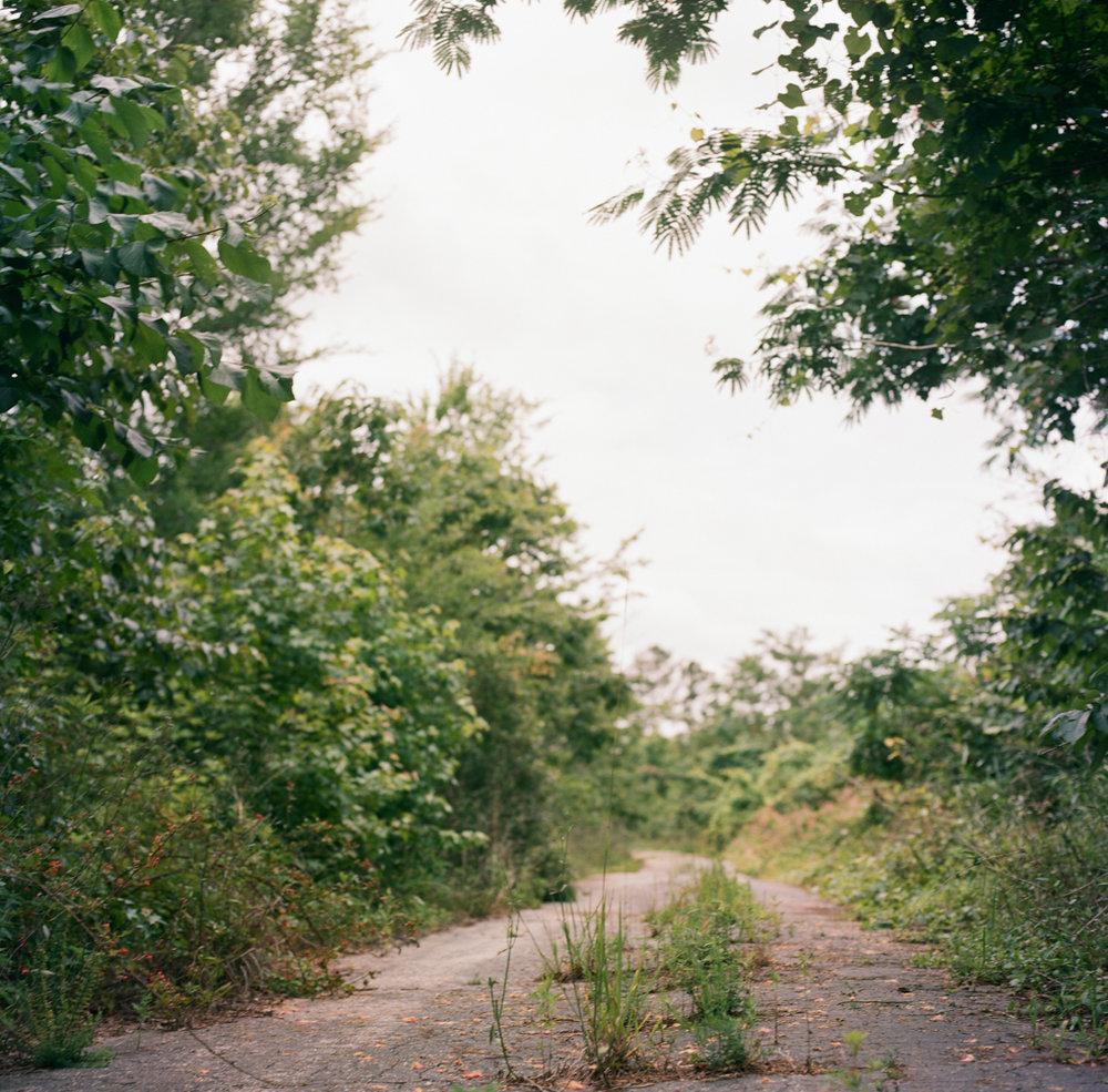 Ashleigh Coleman Deserted highway Mississippi.jpg