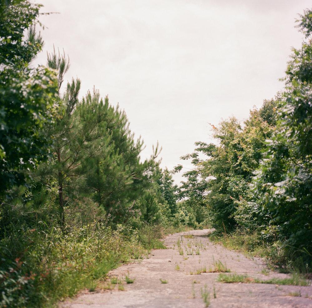 Ashleigh Coleman deserted mississippi highway.jpg
