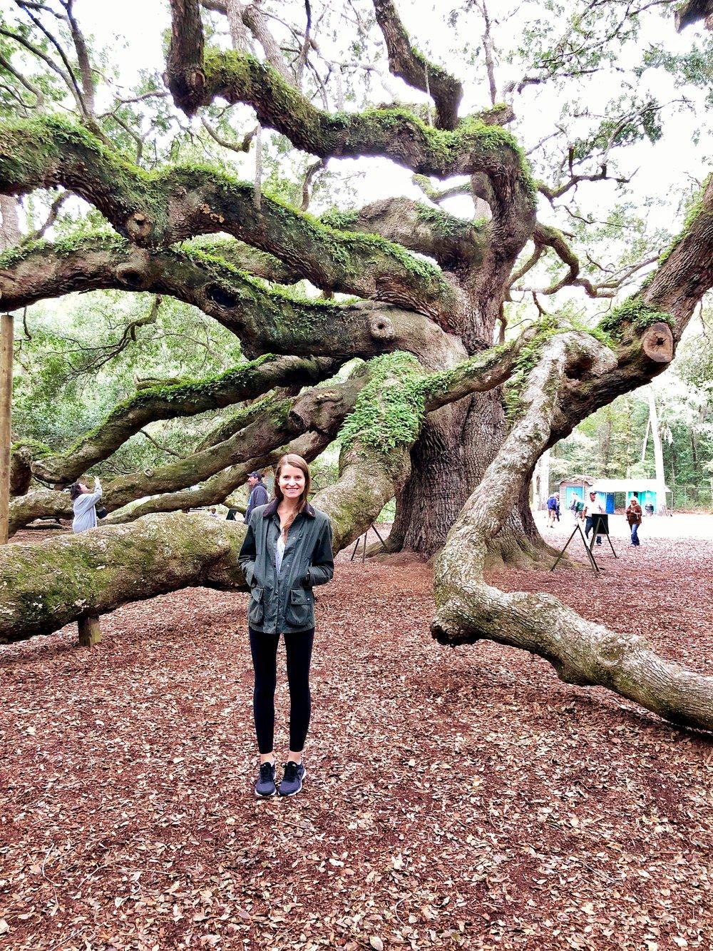 allie angel oak.jpg