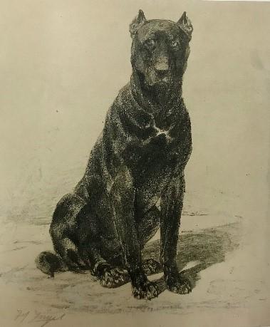 Heinrich von Zügel, Sitzende Dogge, circa 1880/2, charcoal on paper, 31.2 x 26.3 cm, Staatliche Graphische Sammlung München.