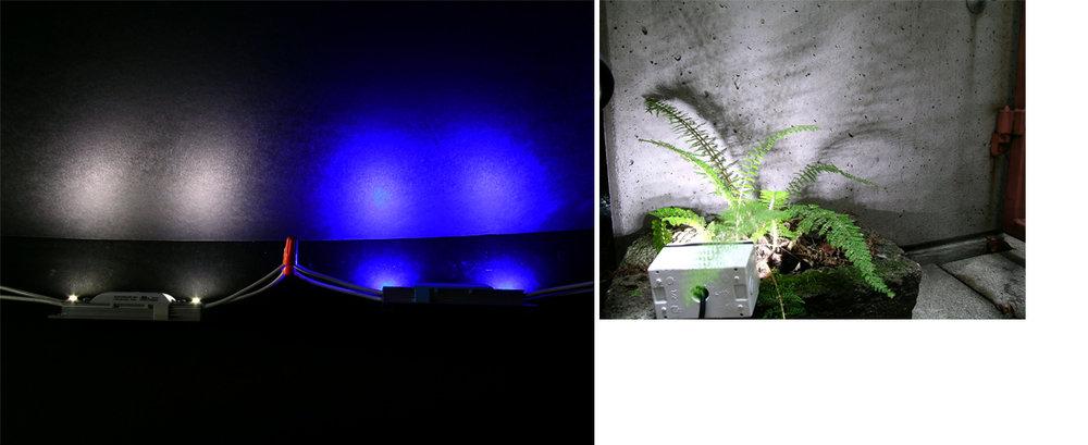 Light Study_pg2.jpg