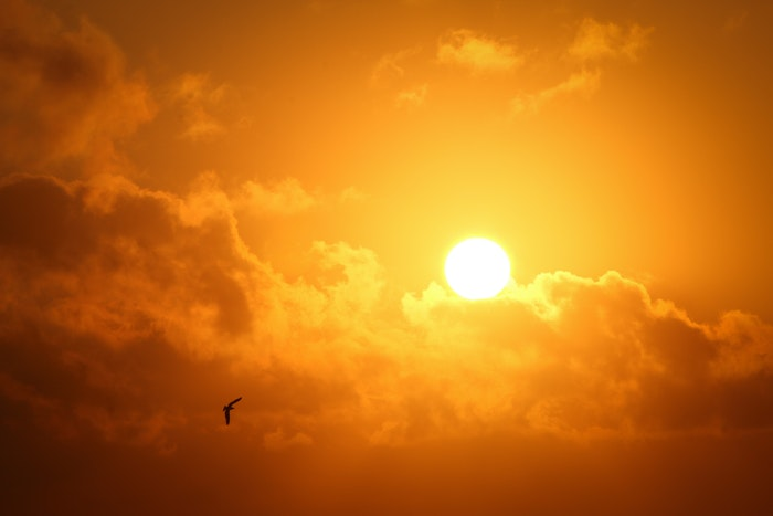 Click here to learn more about the sun and your skin!