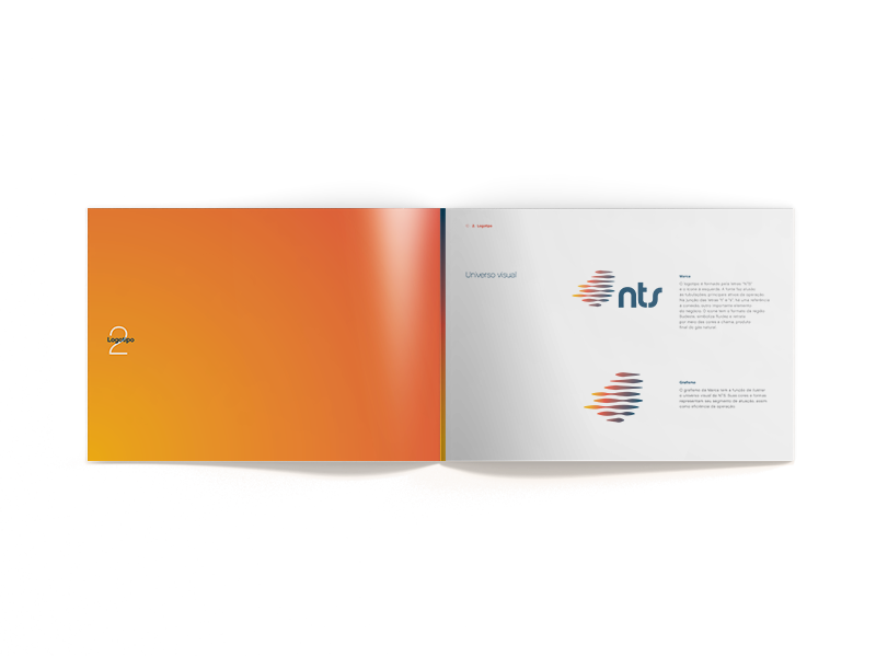 NTS_Site_brandbook_mockup_logo.png