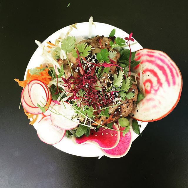 Come try our yoga fest special - Thai yam noodle salad with live harvested micro greens