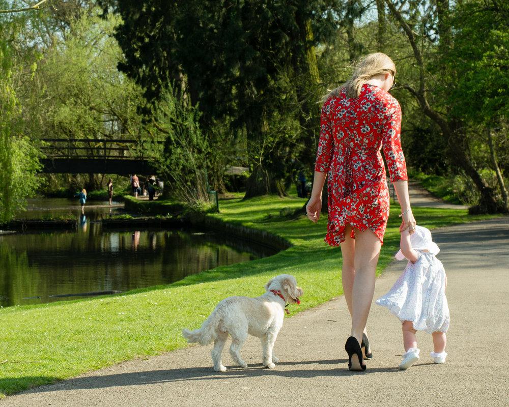 My family in Brueton Park.jpg