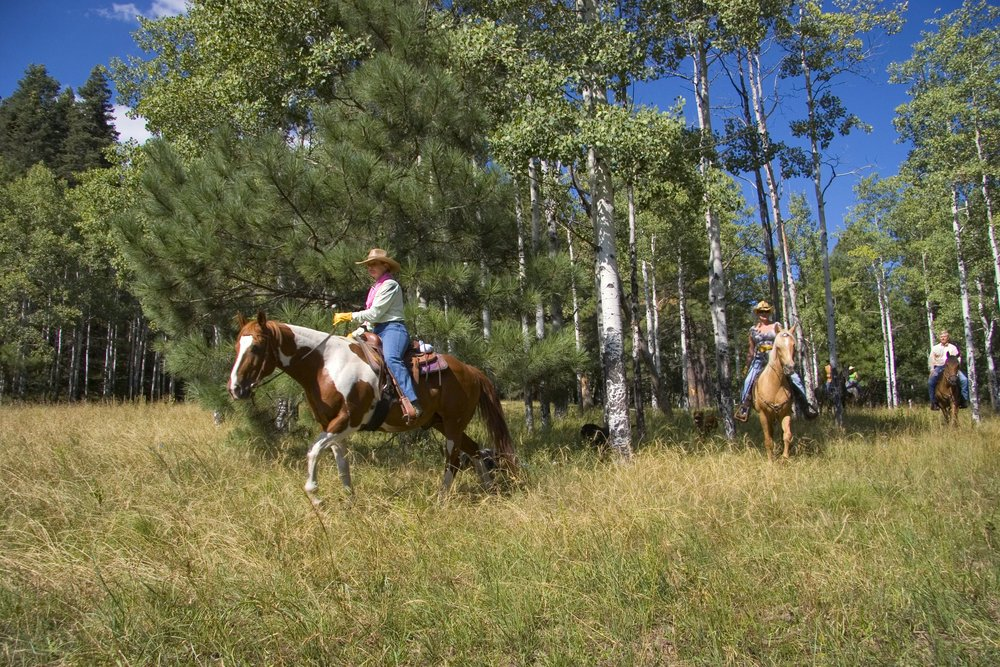 Horseback-Riding-062.jpg
