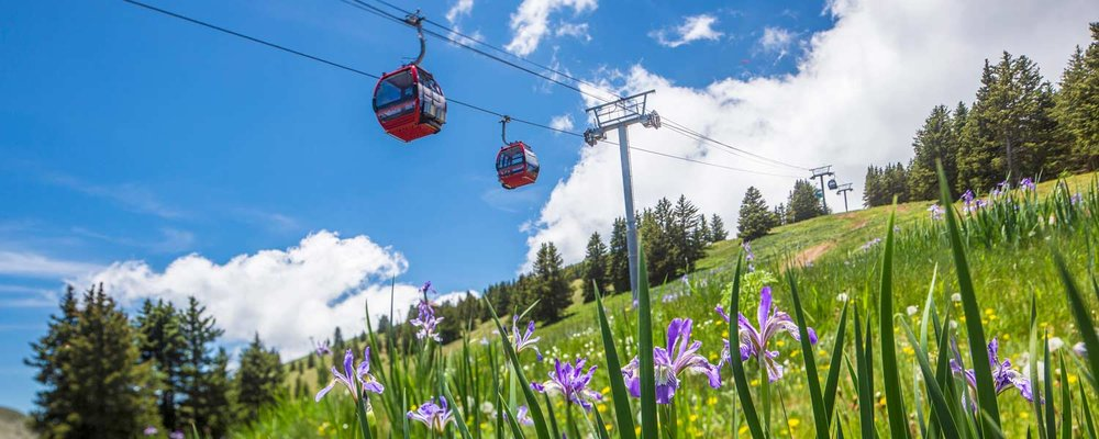 Enjoy a summer gondola ride high above Ruidoso at Ski Apache.