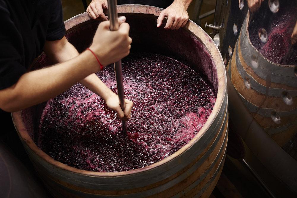 Noisy Water Winery Crush Party - Enchanted Vine Barrn