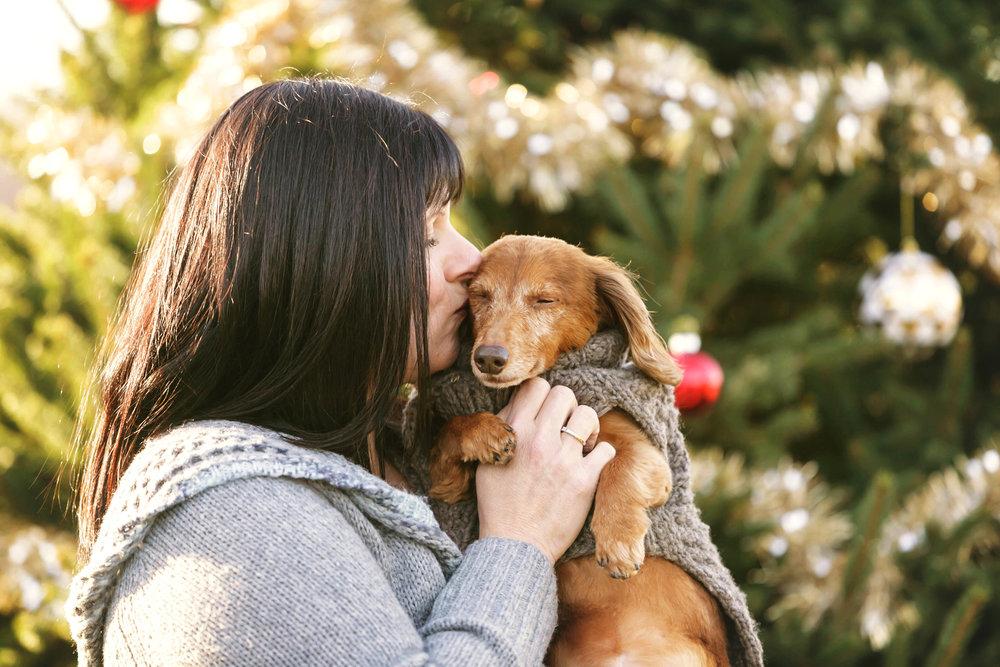 Kimberly and Bandit A Dogs Dilemma Pet Sitting CT.JPG