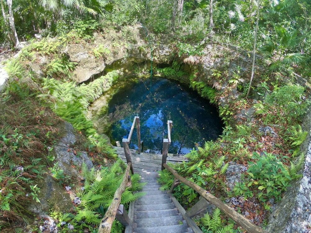 Cenote Mara 2.JPG
