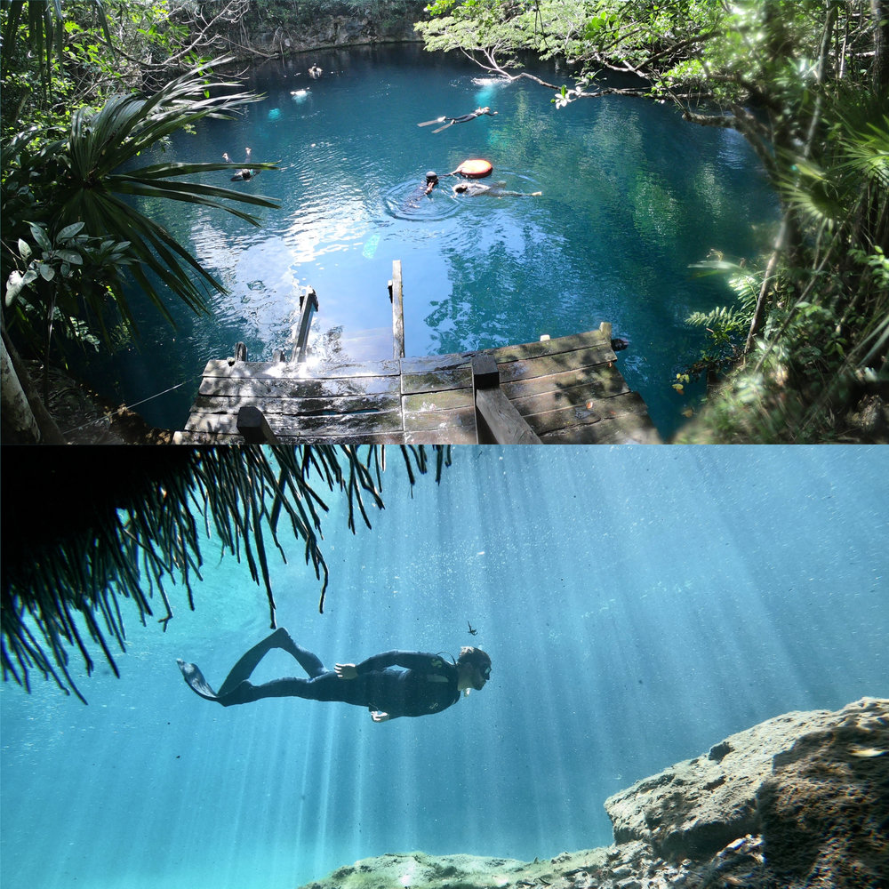 """Best of Tulum: Angelita &Casa Cenote - Freedive in the best spots of Tulum! We will start our day in Angelita (""""Little Angel""""). This cenote is a beautiful underwater cavern with a peculiar backstory. The first 29m of the hole is crystal clear fresh water. At the bottom, you will discover a dense cloud, a hazy layer of hydrogen sulphate separating the fresh and salt water (halocline). On tops tree branches reach up through this layer.We will come back to the center for lunch, and go to Casa Cenote. Located in the middle of a mangrove field, giving the feeling of of freediving underneath the jungle. Due to the connection with the ocean, both fresh and saltwater fish live here. This cenote has lots of fauna from the wetlands and the sea. Also, with a halocline and nice light effects, you can enjoy moving through passages and cracks of limestone.Price 140USD (includes equipment, lunch, transportation, entrance to cenote).Contact us!"""