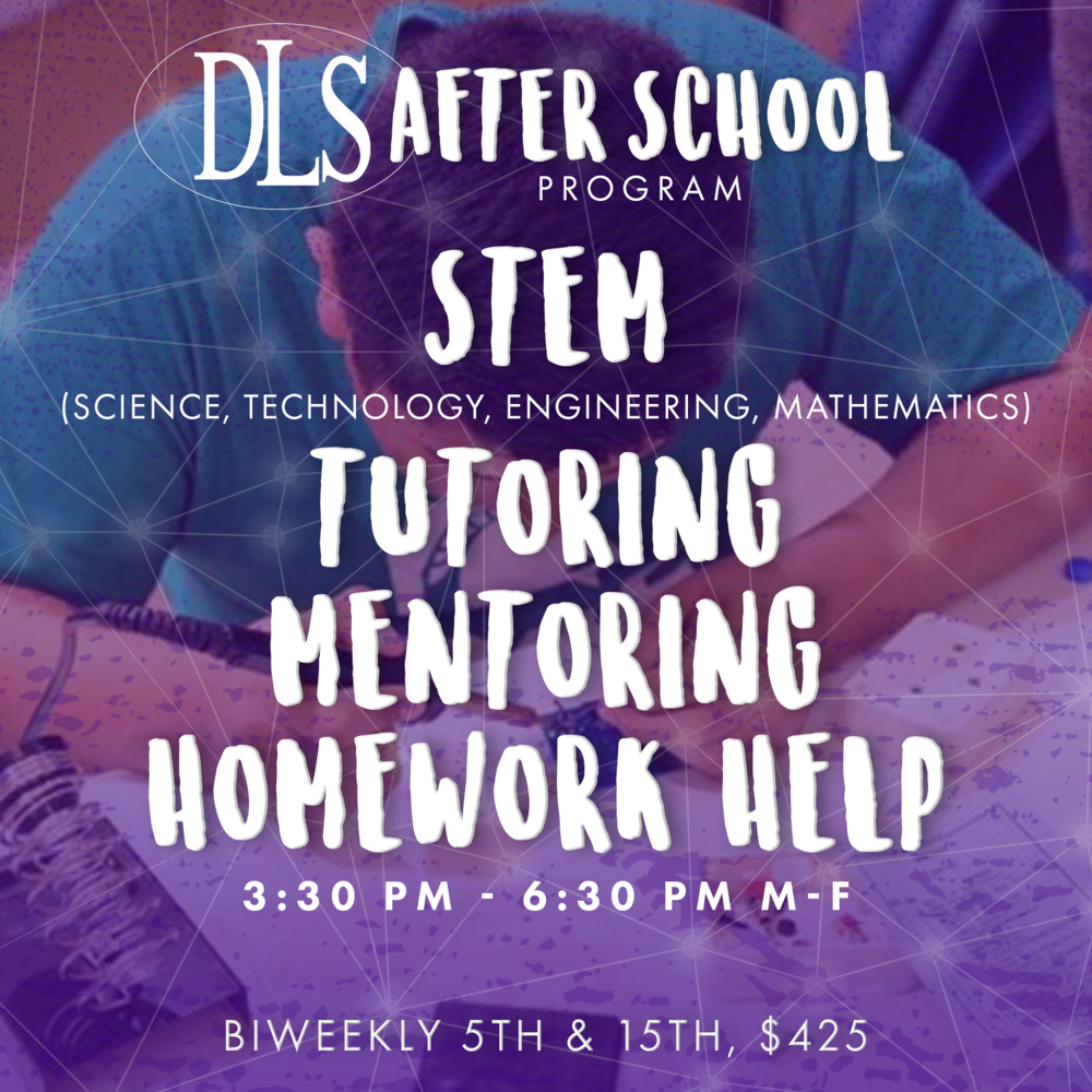 DLS After School Program Info Flyer B.png