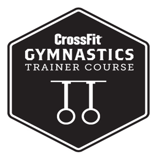 gymnastics-certified-in-home-personal-training-vienna-virginia.jpg