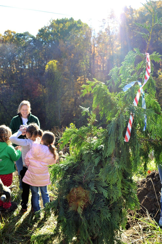 2016-11-05 Tree Planting Day (6).JPG