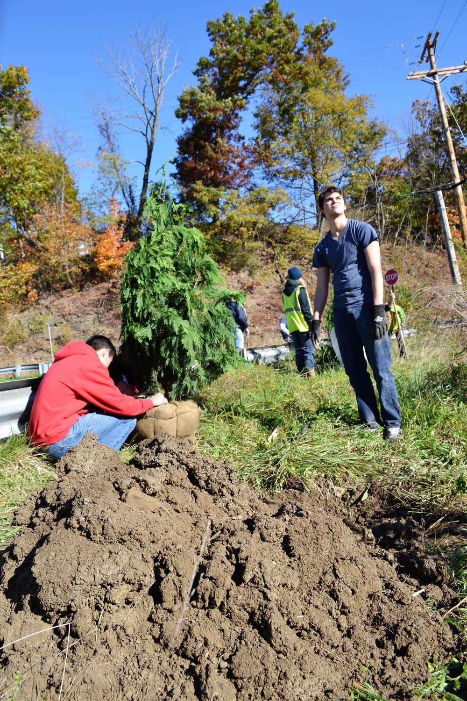2016-11-05 Tree Planting Day (10).JPG