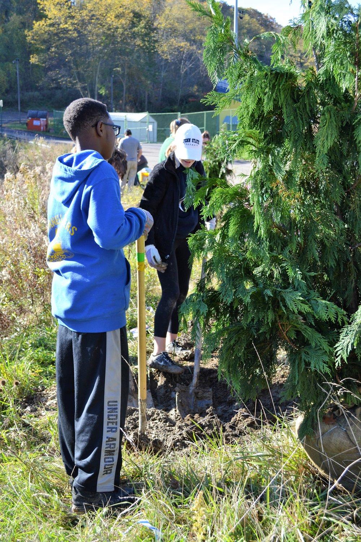 2016-11-05 Tree Planting Day (14).JPG