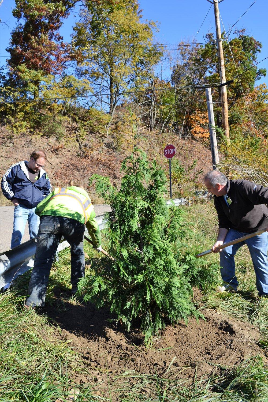 2016-11-05 Tree Planting Day (18).JPG