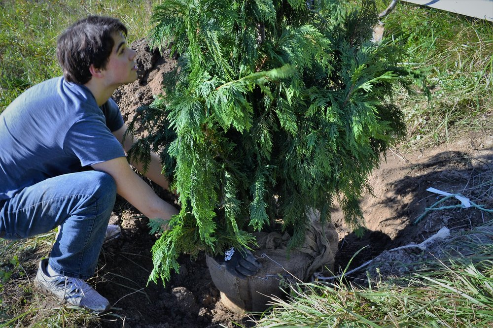 2016-11-05 Tree Planting Day (34).JPG