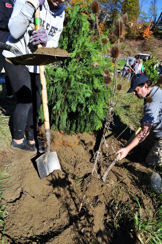 2016-11-05 Tree Planting Day (42).JPG
