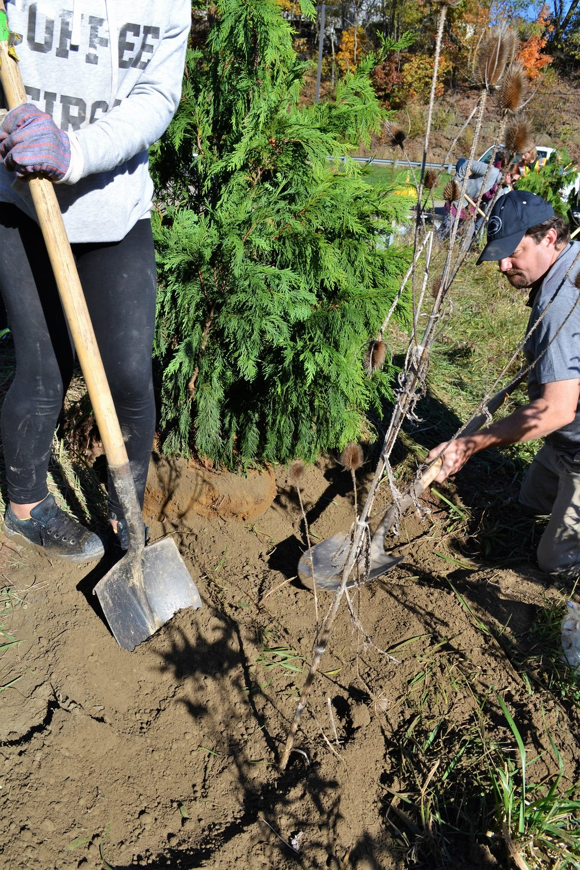 2016-11-05 Tree Planting Day (43).JPG