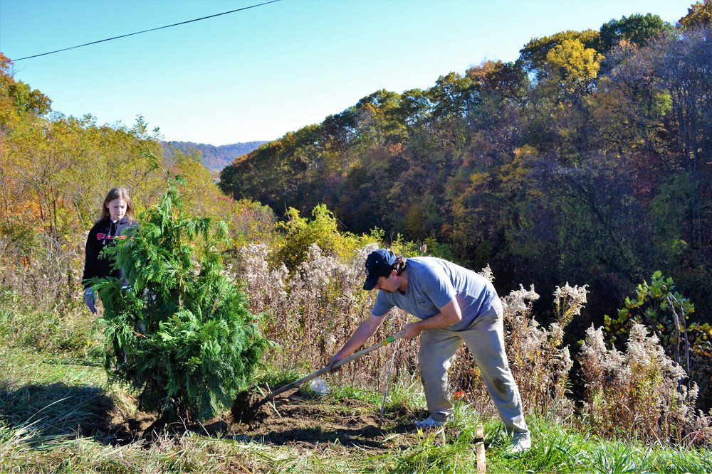 2016-11-05 Tree Planting Day (54).JPG