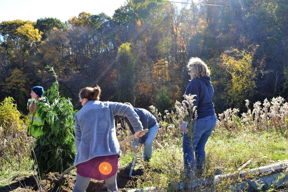 2016-11-05 Tree Planting Day (61).JPG