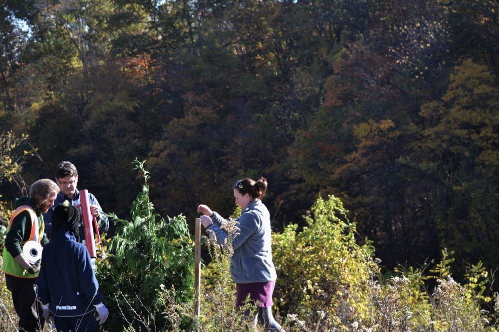 2016-11-05 Tree Planting Day (81).JPG