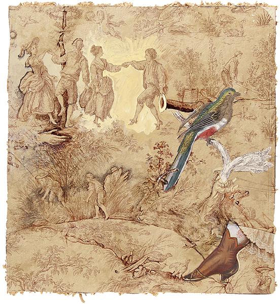 Bird And Petticoat