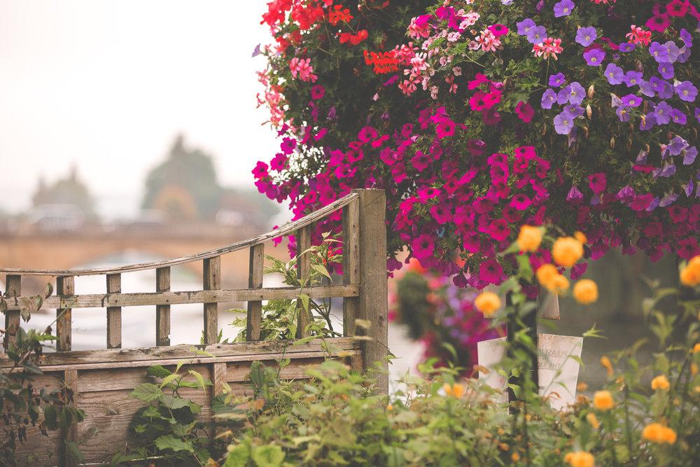 HighlightStudios_LondonWeddingPhotographer_MollyandDaniel-61.jpg