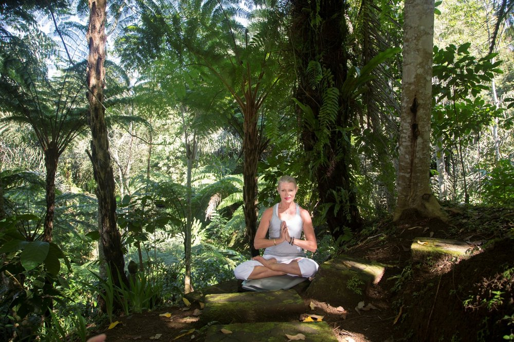 Alassari Yoga Val lotus 2 (Custom).jpg