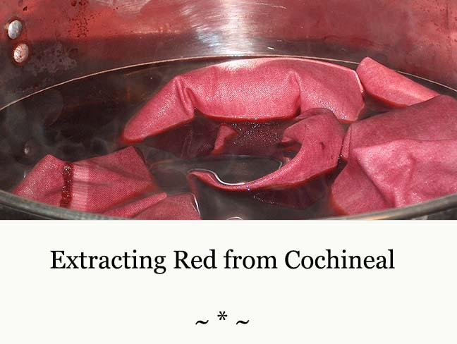 Cochineal Banner.jpg