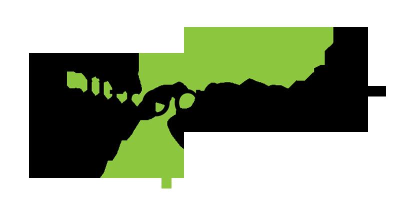bullfrog-logo-plain.png