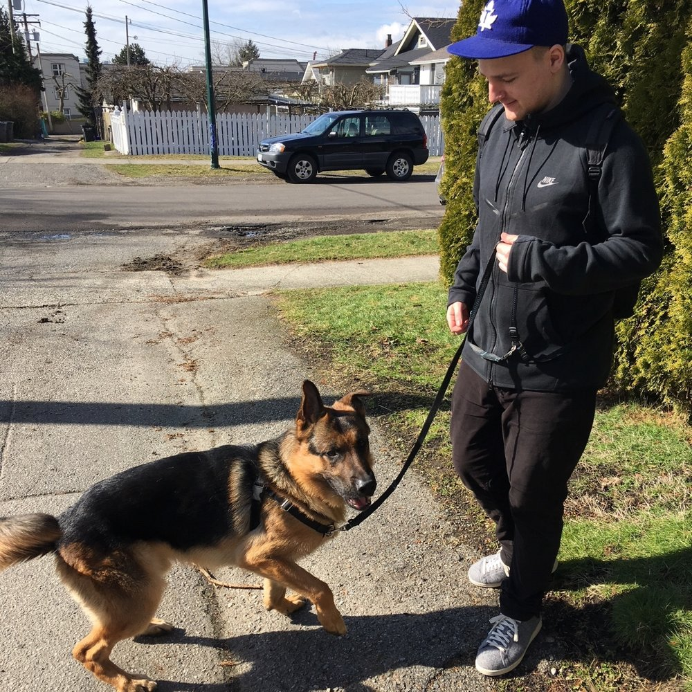 Hi! I'm Eamonn. - I grew up in Hastings Sunrise and when I'm not playing hockey or cheering on the Leafs I enjoy visiting all of the awesome parks in our neighbourhood with my own high energy dog, Elvis. I've always been a dog person and love getting to spend time with all of my furry clients! I also have my Dogsafe Canine First Aid certification.