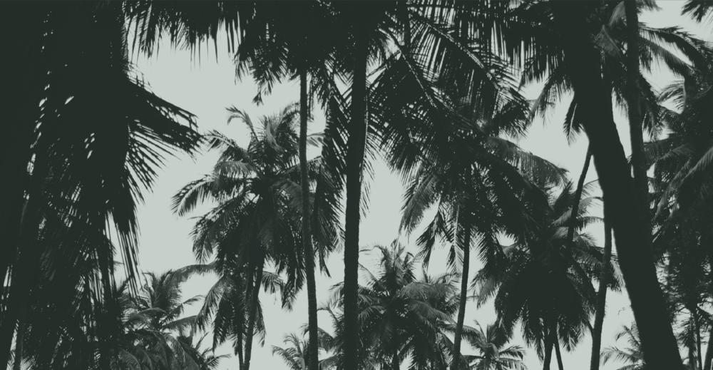 test landscape-02.png