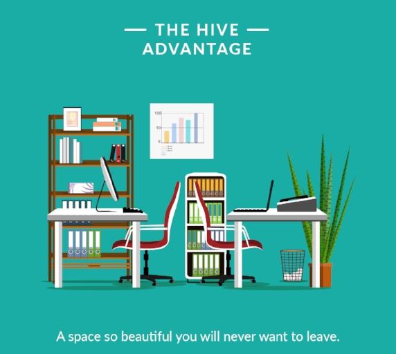 Hive 11(1).jpg