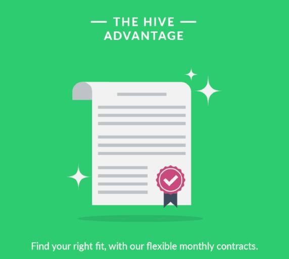 Hive 09.jpg