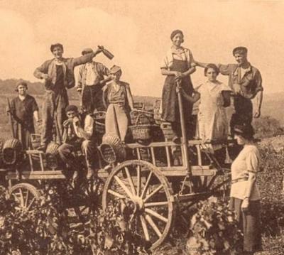 Italian farmers, or  contadini , no relation to me
