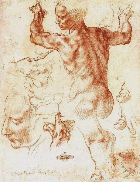 Studies for the Libyan Sybil, Michelangelo [ source ]