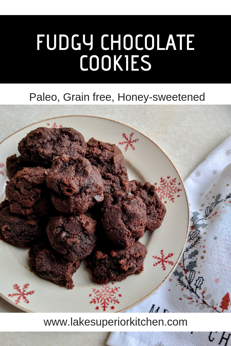 Fudgy Chocolate Cookies, Lake Superior Kitchen, Paleo cookies, grain free, no sugar, gluten free