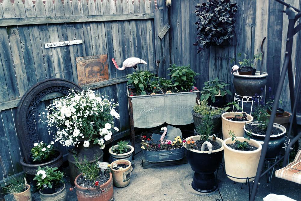 Garden2-lo.jpg
