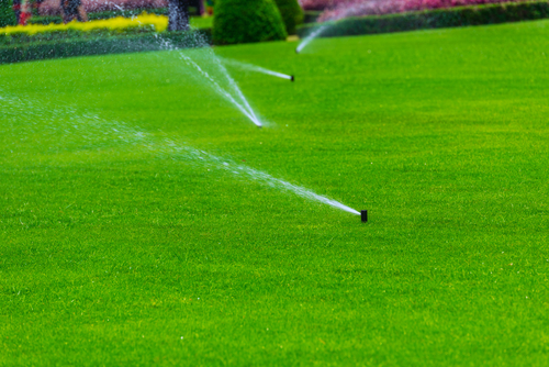 Irrigation  Repair, start-up and winterization of automated lawn sprinkler system
