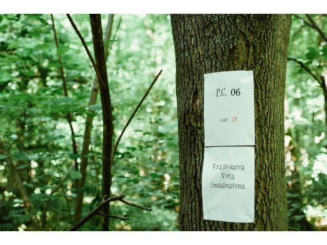 16-06-01-01-35-17big_activitate_1_iunie_pădurea_baneasa_foto_andrei_lupu_05.jpg