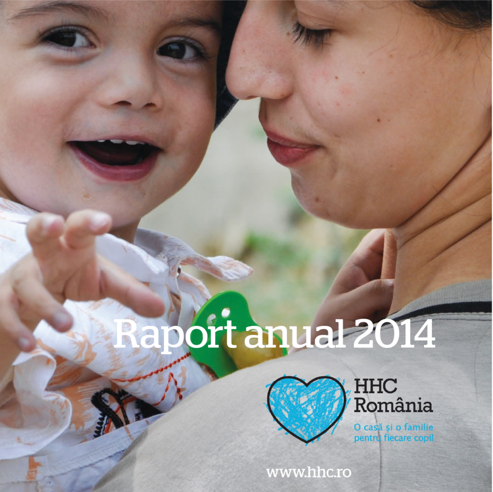 Raport anual-03.png