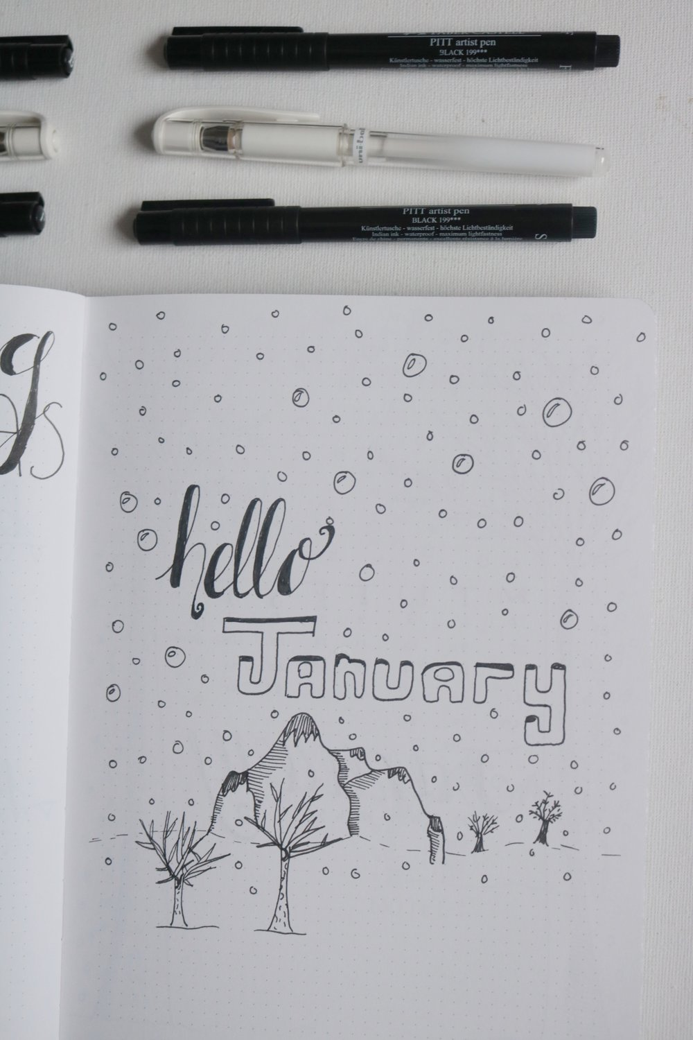 look through january