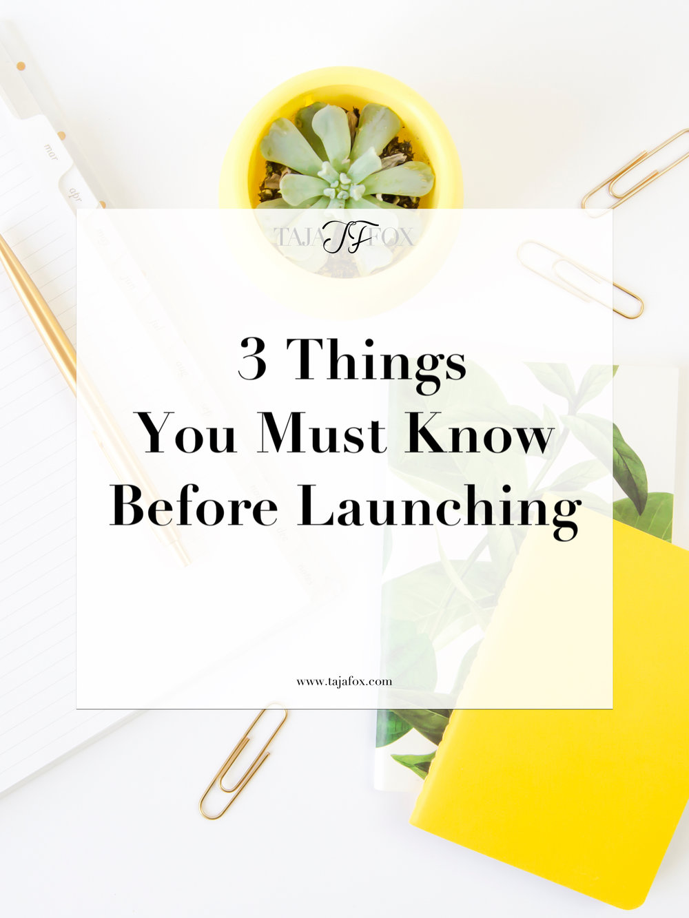 Know These 3 Things Before Launching | Taja Fox