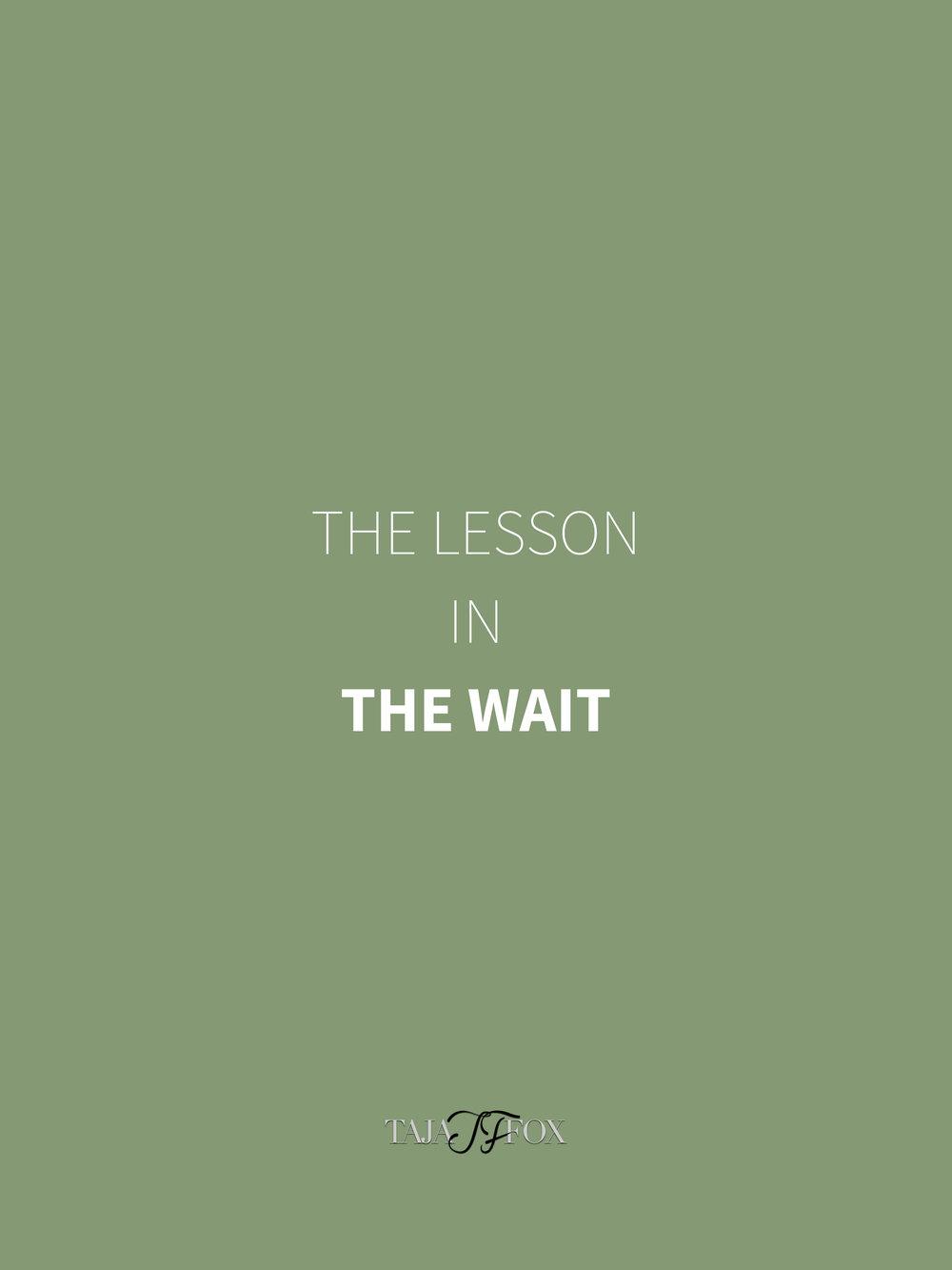 The Lesson tajafox.com.jpg