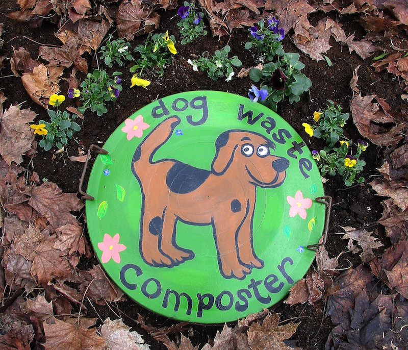 Dog Waste Disposal