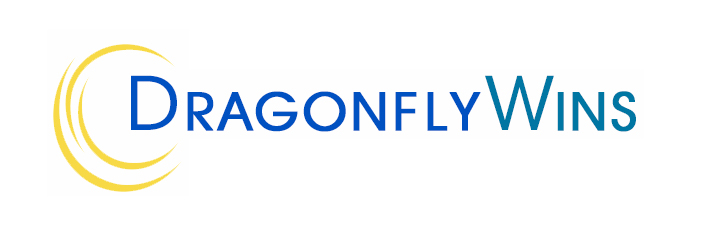 women-owned-business-charleston-dragonfly-wins.png